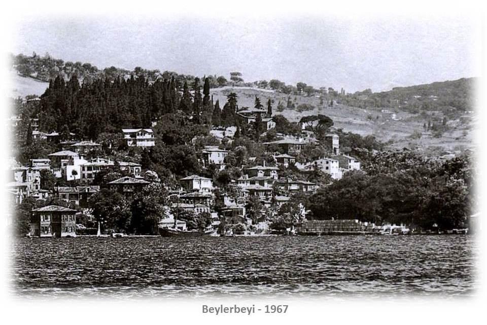 Slayt52